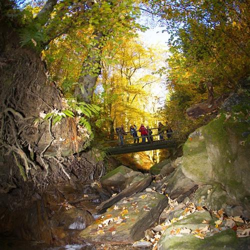 Schluchten und Brücken Winterberg Impressionen