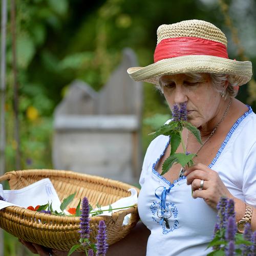 Pension-Aloisia-Scheffau-Am-Trattenbach-3-Familie-Stock-Garten-Sommer-neu10.jpg