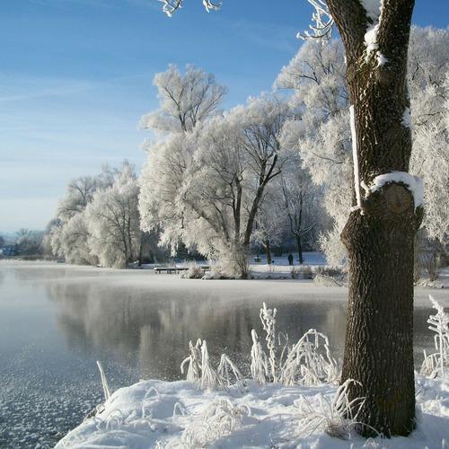 See im Winter