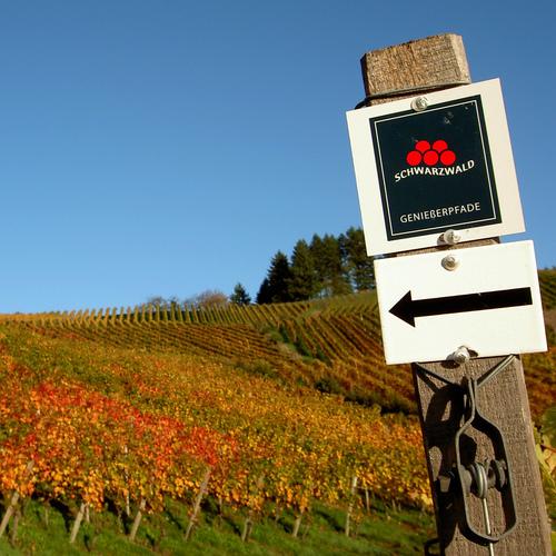 Durbacher Weinweg