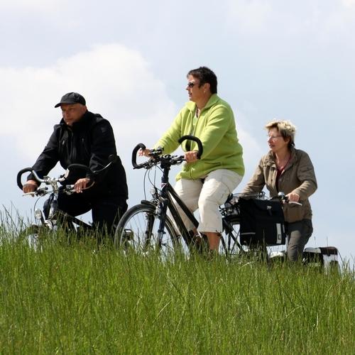 Radfahrer unterwegs auf dem Deich bei Bleckede