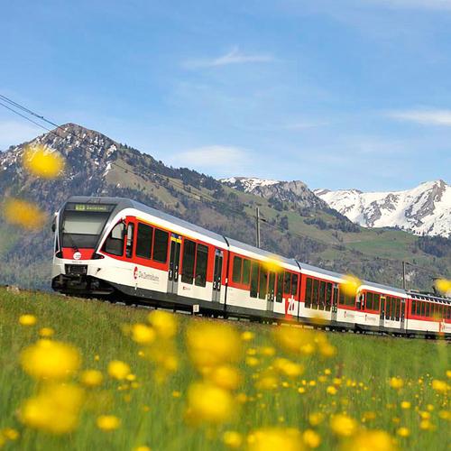 Bahn im Sommer