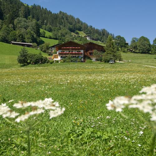 Pension-Ladestatthof-Haus-Sommer1.jpg