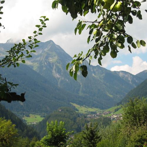 Mayrhofen-Hippach Sommer