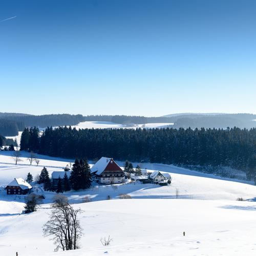 Schonach Winter