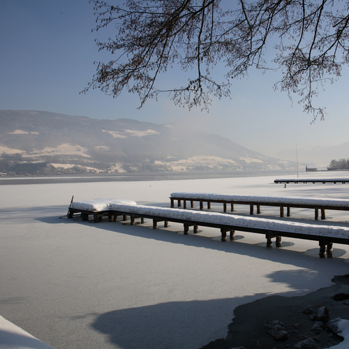 Wintermorgen am See