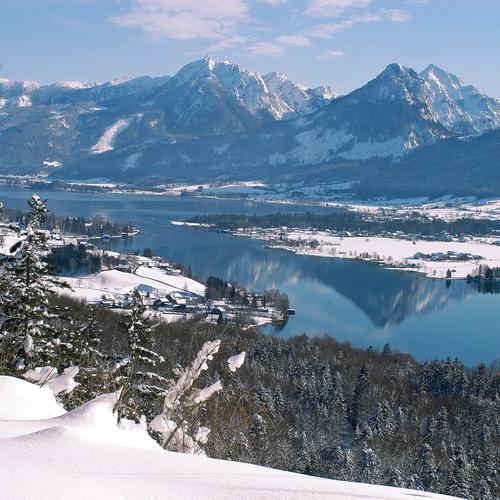Winter Titelbild