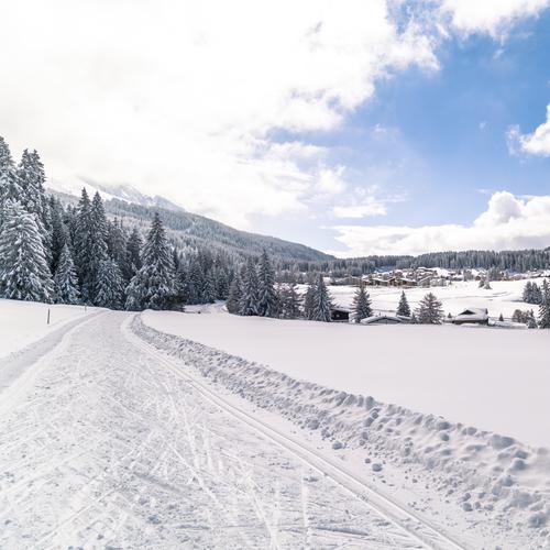 Langlauf Mittelberg