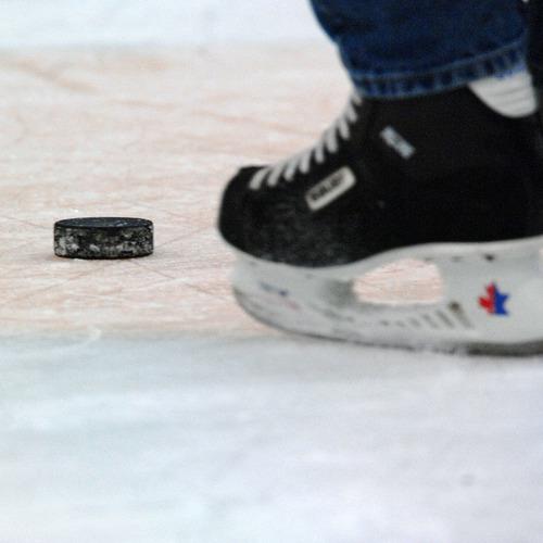 hockey-puck-584978_1280.jpg