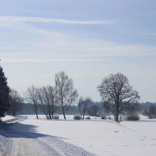 Bad_Woerishofen_Winterlandschaft3