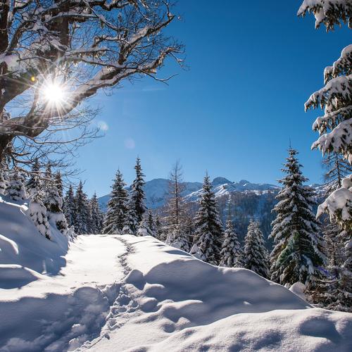Landschaft Winter 3