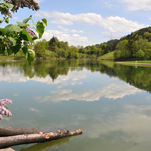 Krummsee_Alpbachtal Seenland Tourismus.jpeg