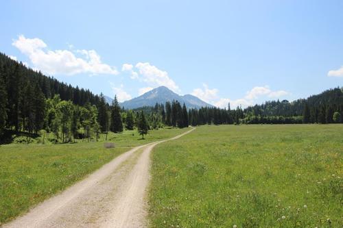 Wandern und Mountainbiken bei der Kalbelehof Alpe