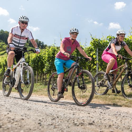 Radfahren durch den Weinberg