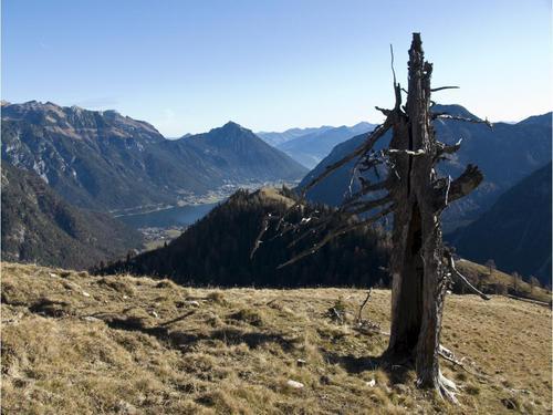 Beim Abstieg vom Gütenberg sieht man zum zweiten Gipfelziel, dem Feilkopf.