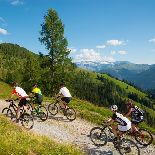 mountainbiken-almen-sommer_Routen