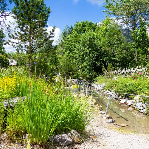 Alpengarten_Pfronten Tourismus, lukafo.de.jpg