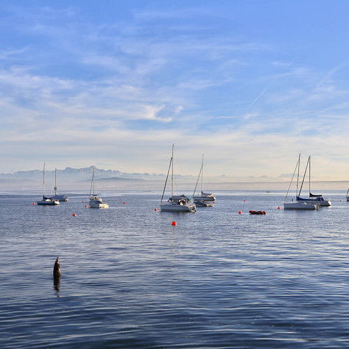 Schiffe auf dem See in Hagnau