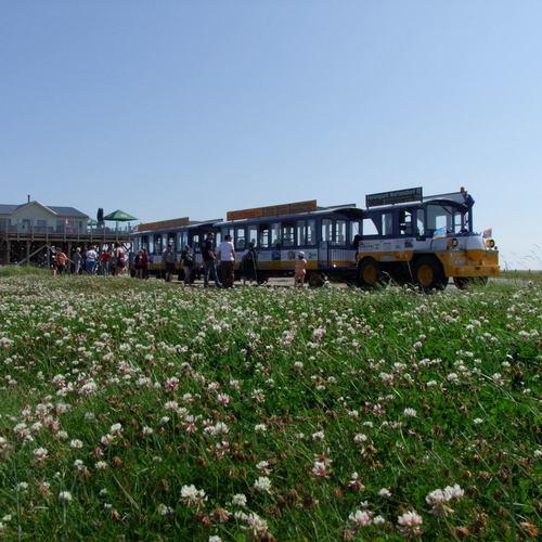 Ausflugsbahn Hitzlöper