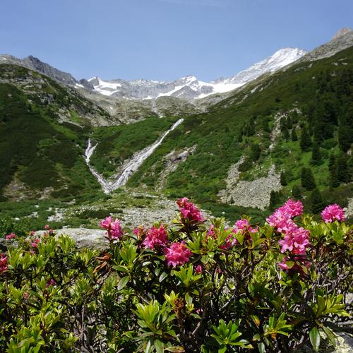 Zillertal im Sommer