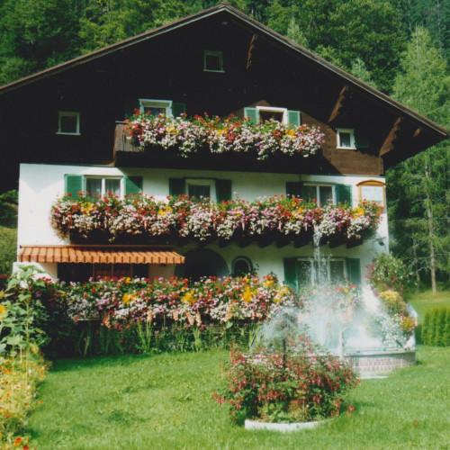 Blumenhaus.jpeg