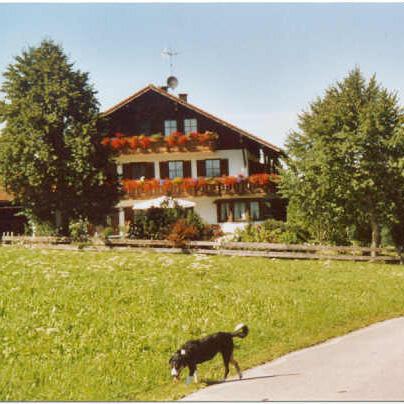 Haus mit Hund.jpg