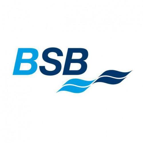 BSB Logo_profilbildoptimiert.jpg