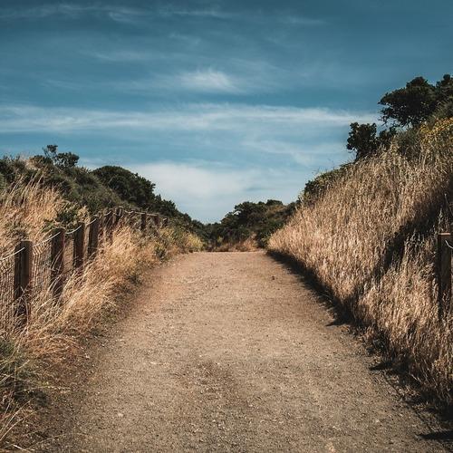 Themenweg Küste