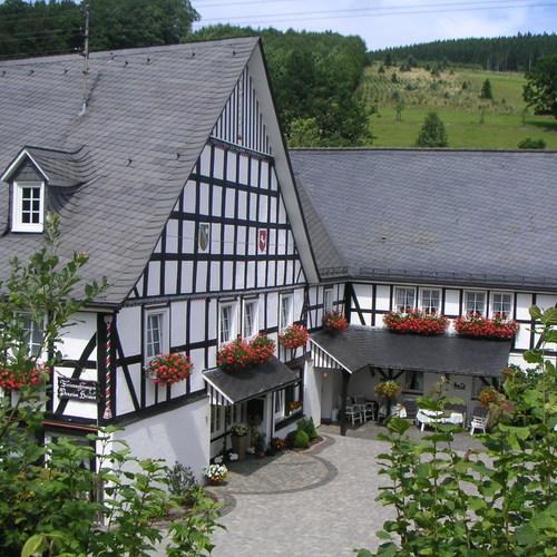Milchenbach 0709 024.JPG