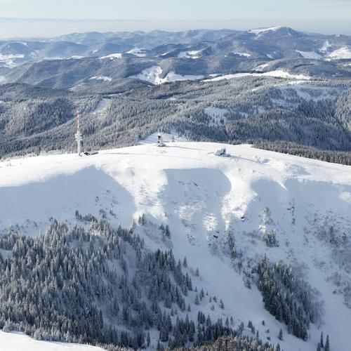 Schwarzwald im Winter