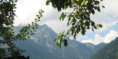 Mayrhofen-Hippach
