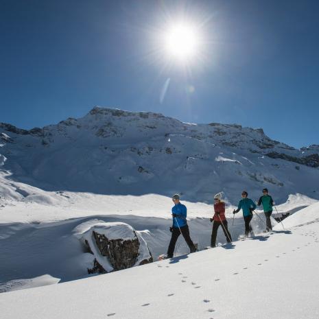 Schneeschuhwandern in Adelboden