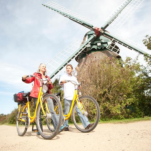 Fahrradfahren in der Geltinger Birk