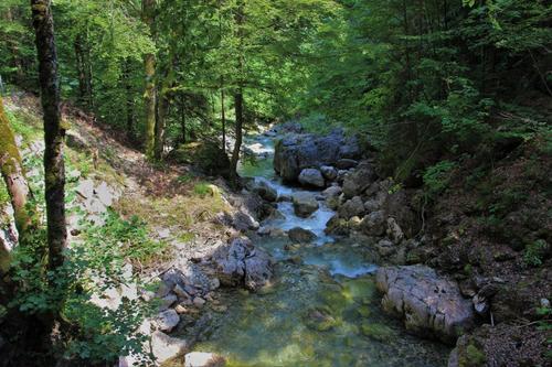 Fluss Ach