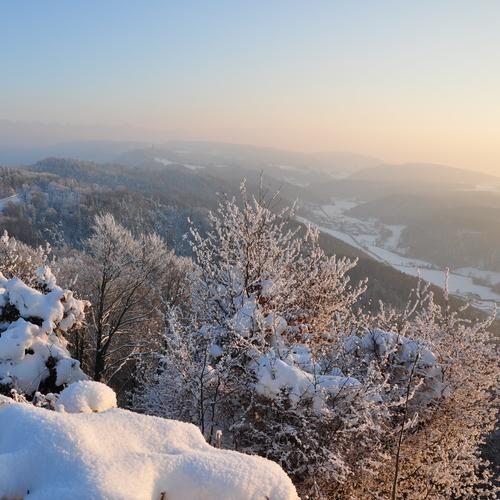 Üetliberg Winter