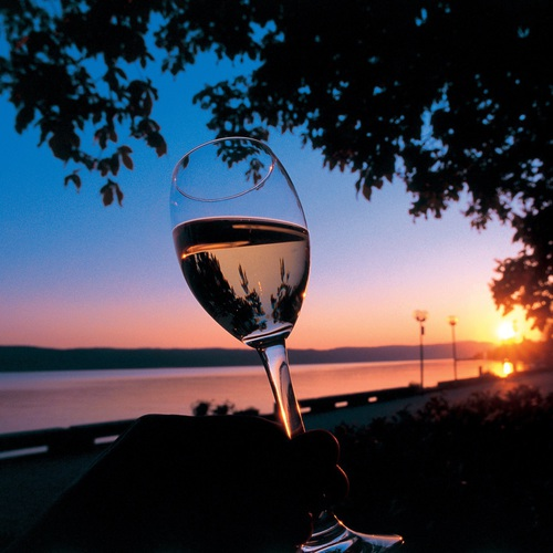 Weinglas im Sonnenuntergang in Überlingen