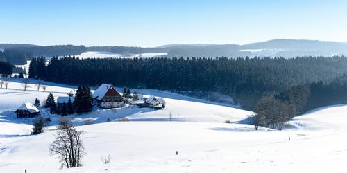 Ferienland Schwarzwald