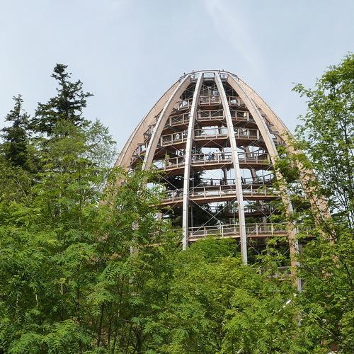 Baumwipfelpfad Bayerischer Wald, Neuschönau