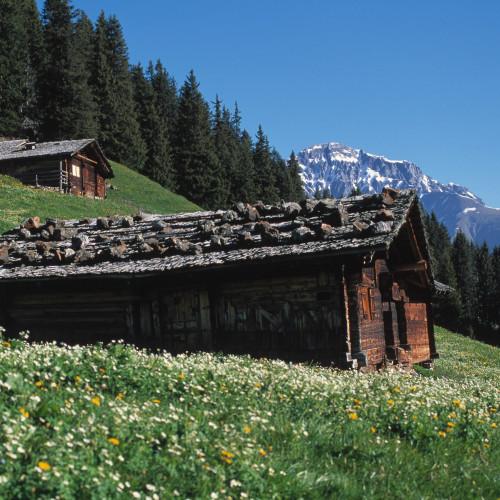 Bergwelt Adelboden