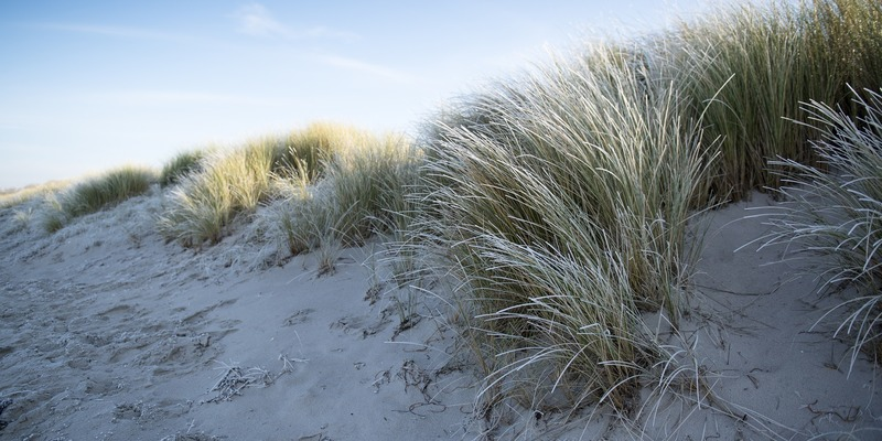 Ostsee Winter