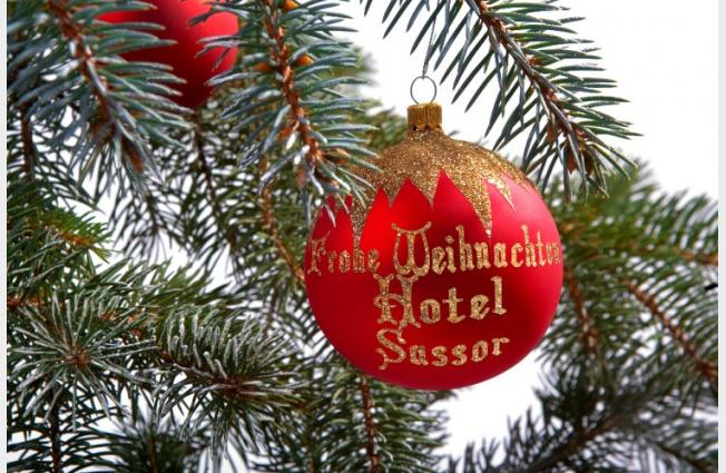Hotel Sassor