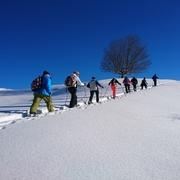 Schneeschuherlebnis Diemtigtal