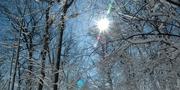 snow-263918.jpg