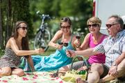 Picknick mit Wein