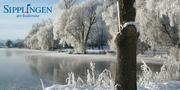 Winter_2zu1.jpg