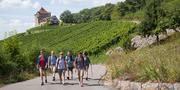 Wandern im Heilbronner Land_Heilbronner Land.jpg