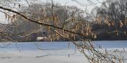 Winterlicher See _ CC0 via pixabay.jpg
