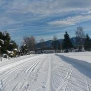 Winter Loipe