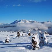 Stoarnene Mandln im Winter