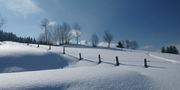 Bregenzerwald Winter_Böhringer Friedrich CC BY-SA 2.5 Generic via wikicommons.JPG